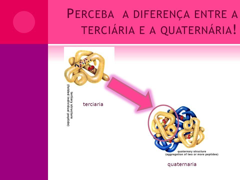 P ERCEBA A DIFERENÇA ENTRE A TERCIÁRIA E A QUATERNÁRIA ! terciaria quaternaria