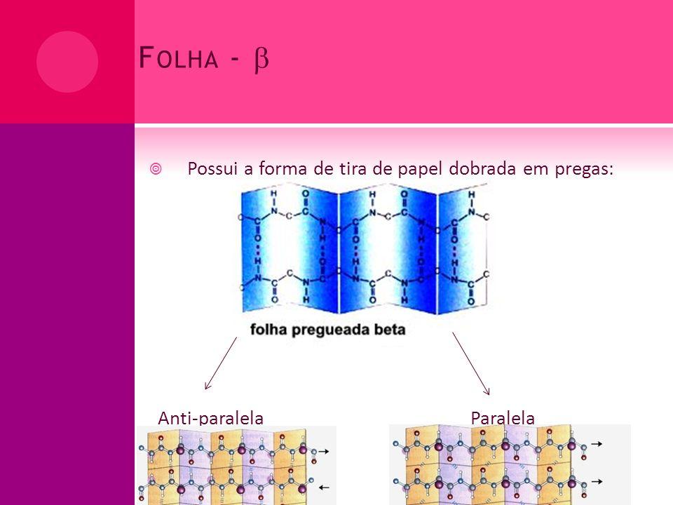 F OLHA - uma hélice bastante estendida que não assumi mais o papel de espiral As pontes de hidrogênio são formadas entre segmentos adjacentes da cadeia polipeptídica Cadeias laterais de aminoácidos adjacentes projetam-se em direções opostas (a partir da estrutura em zigue- zague) criando um padrão alternado