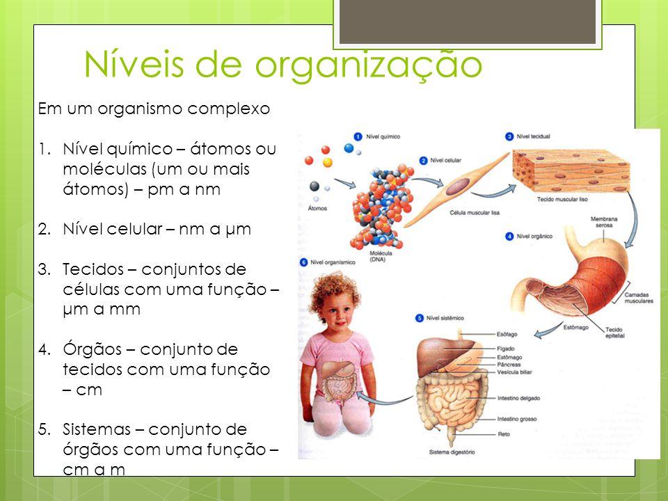 Em um organismo complexo 1.Nível químico – átomos ou moléculas (um ou mais átomos) – pm a nm 2.Nível celular – nm a μm 3.Tecidos – conjuntos de célula
