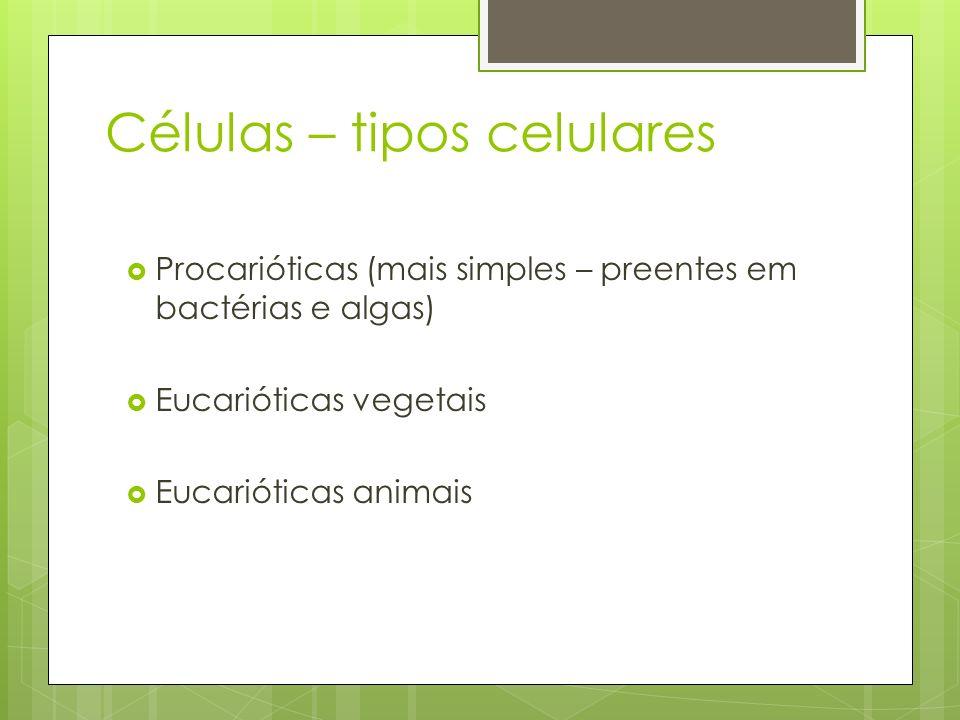 Células – outros componentes Parede celular Presente em procarióticas e eucarióticas Confere rigidez a célula – proteção Vácuolo Comum nas células vegetais – armazenamento de substâncias