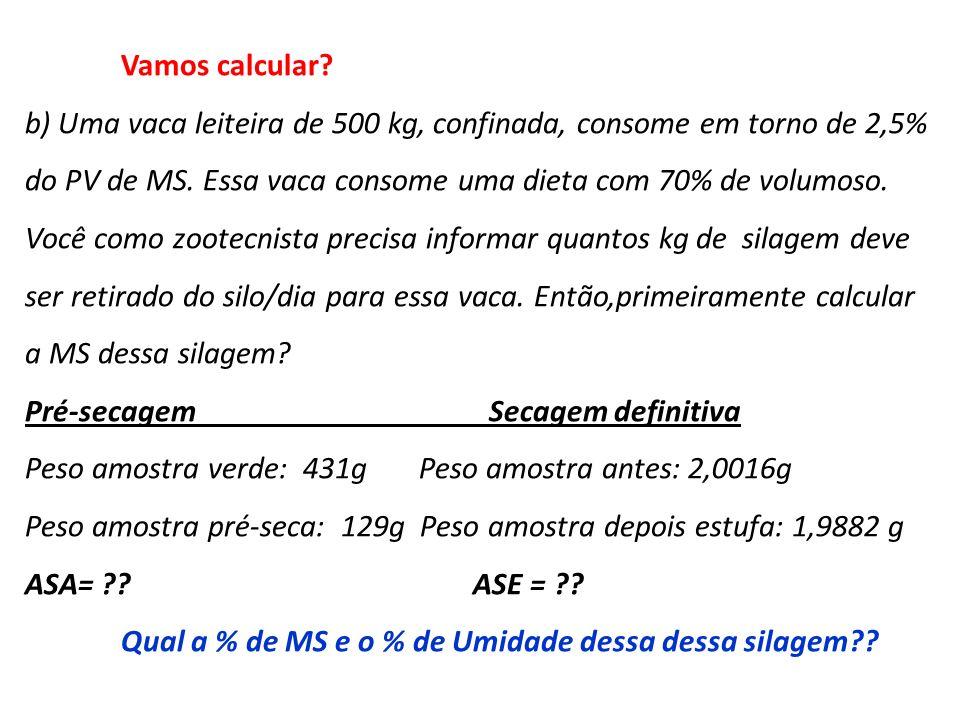 Vamos calcular? b) Uma vaca leiteira de 500 kg, confinada, consome em torno de 2,5% do PV de MS. Essa vaca consome uma dieta com 70% de volumoso. Você