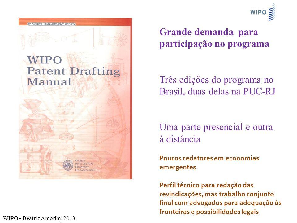 Grande demanda para participação no programa Três edições do programa no Brasil, duas delas na PUC-RJ Uma parte presencial e outra à distância WIPO -