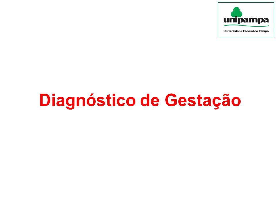 Ultrassonografia Monitoramento de gestações gemelares Possível também monitoramento de morte embrionária precoce Sexagem fetal (55-60 dias de gestação) Sexagem pela via transabdominal (120-150 dias)
