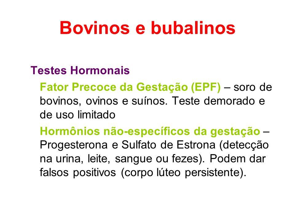 Bovinos e bubalinos Testes Hormonais Fator Precoce da Gestação (EPF) – soro de bovinos, ovinos e suínos. Teste demorado e de uso limitado Hormônios nã