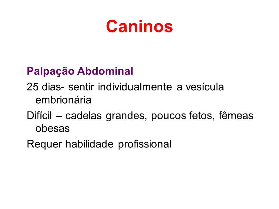 Caninos Palpação Abdominal 25 dias- sentir individualmente a vesícula embrionária Difícil – cadelas grandes, poucos fetos, fêmeas obesas Requer habili