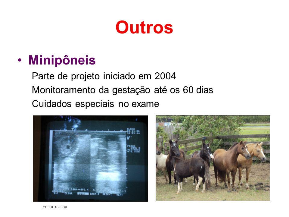 Outros Minipôneis Parte de projeto iniciado em 2004 Monitoramento da gestação até os 60 dias Cuidados especiais no exame Fonte: o autor