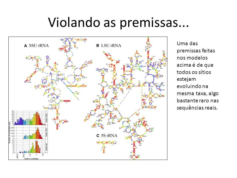 Violando as premissas... Uma das premissas feitas nos modelos acima é de que todos os sítios estejam evoluindo na mesma taxa, algo bastante raro nas s