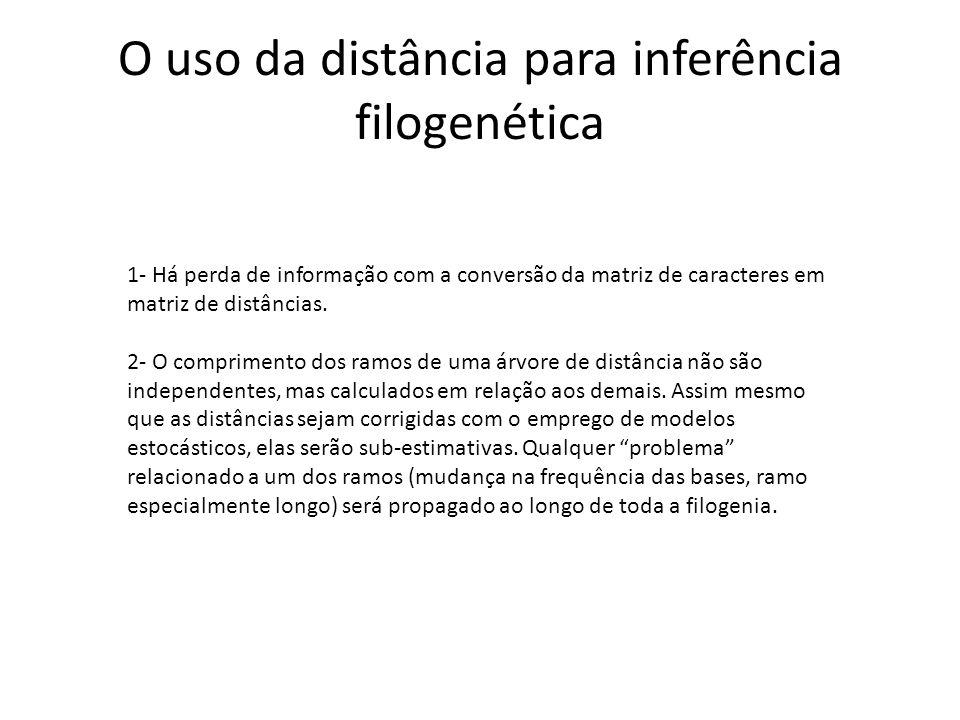 O uso da distância para inferência filogenética 1- Há perda de informação com a conversão da matriz de caracteres em matriz de distâncias. 2- O compri