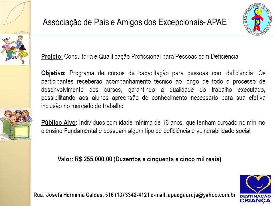 Associação de Pais e Amigos dos Excepcionais- APAE Projeto: Consultoria e Qualificação Profissional para Pessoas com Deficiência Objetivo: Programa de cursos de capacitação para pessoas com deficiência.
