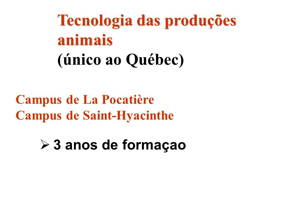 3 anos de formaçao Tecnologia das produções animais Tecnologia das produções animais (único ao Québec) Campus de La Pocatière Campus de Saint-Hyacinth