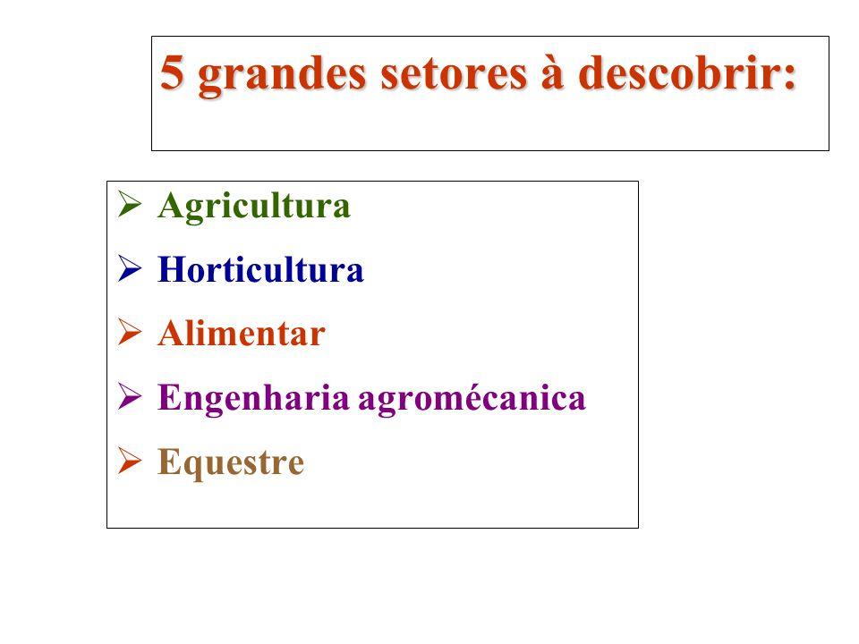 Agricultura Horticultura Alimentar Engenharia agromécanica Equestre 5 grandes setores à descobrir: