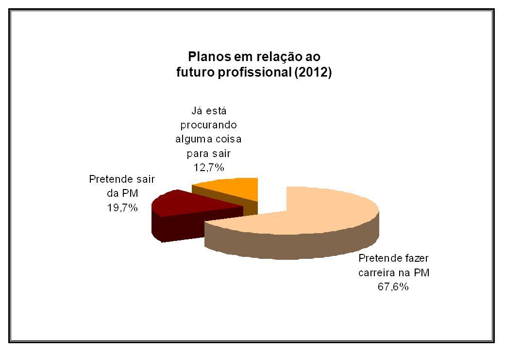 Planos em relação ao futuro profissional (2012)