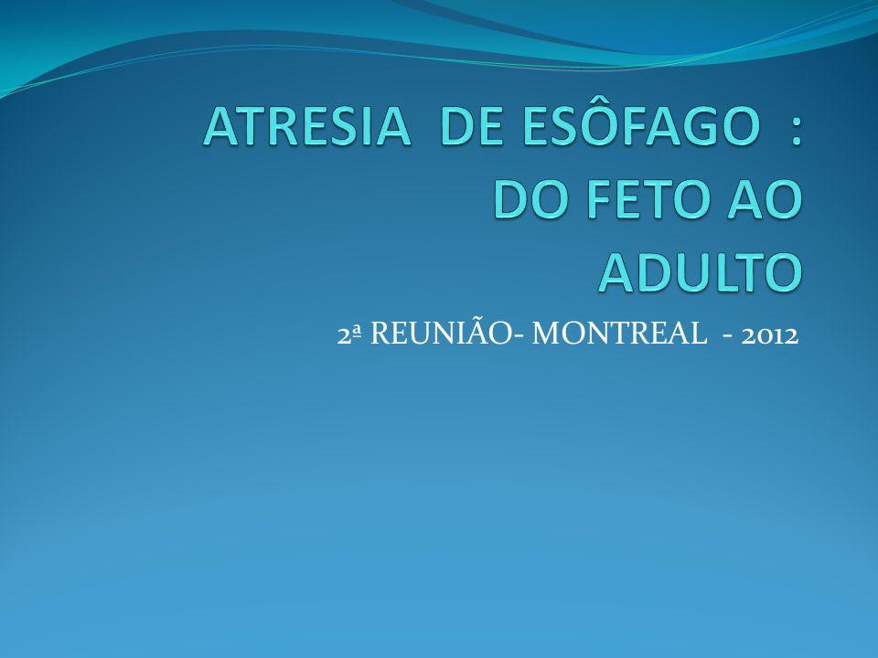 2ª REUNIÃO- MONTREAL - 2012