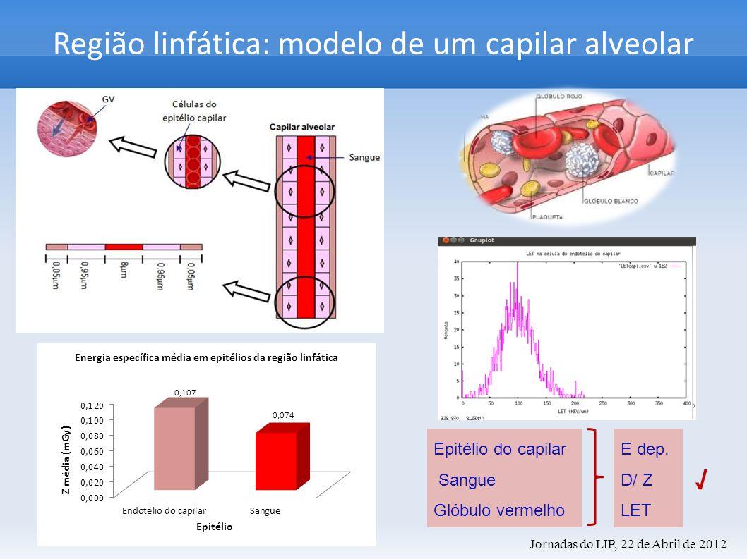 Região linfática: modelo de um capilar alveolar Epitélio do capilar Sangue Glóbulo vermelho E dep. D/ Z LET Jornadas do LIP, 22 de Abril de 2012