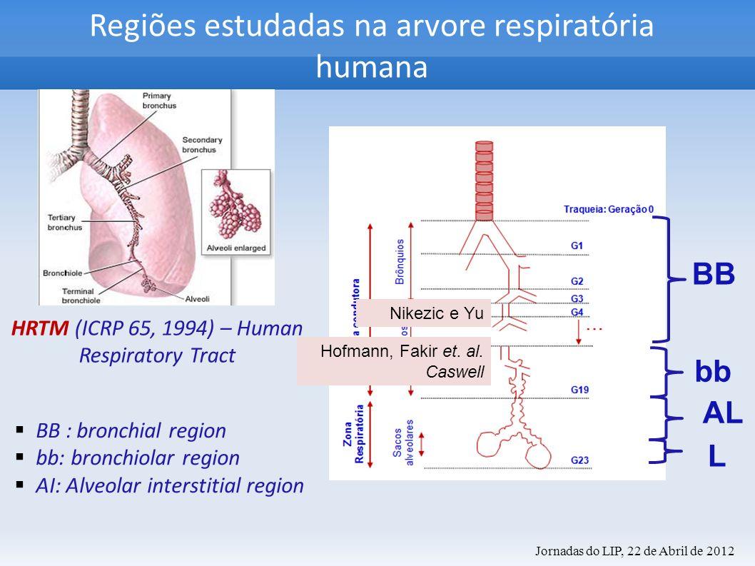 Regiões estudadas na arvore respiratória humana HRTM (ICRP 65, 1994) – Human Respiratory Tract BB : bronchial region bb: bronchiolar region AI: Alveol