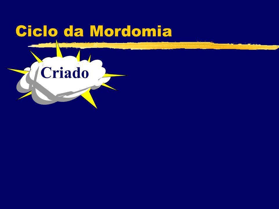 Criado Ciclo da Mordomia