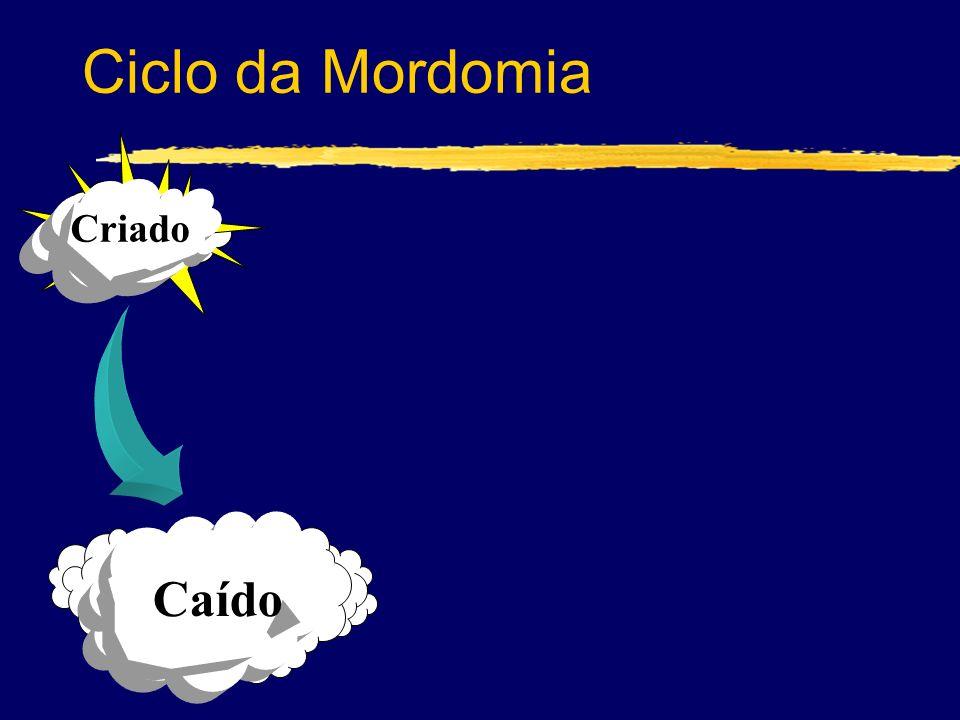 Caído Criado Ciclo da Mordomia
