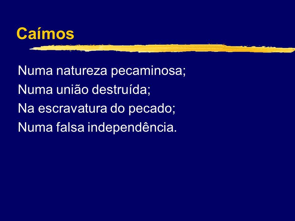 Caímos Numa natureza pecaminosa; Numa união destruída; Na escravatura do pecado; Numa falsa independência.