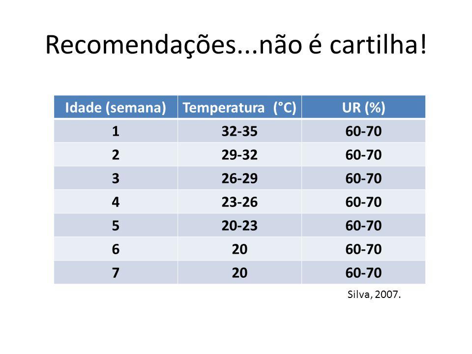 Recomendações...não é cartilha! Idade (semana)Temperatura (°C)UR (%) 132-3560-70 229-3260-70 326-2960-70 423-2660-70 520-2360-70 62060-70 72060-70 Sil