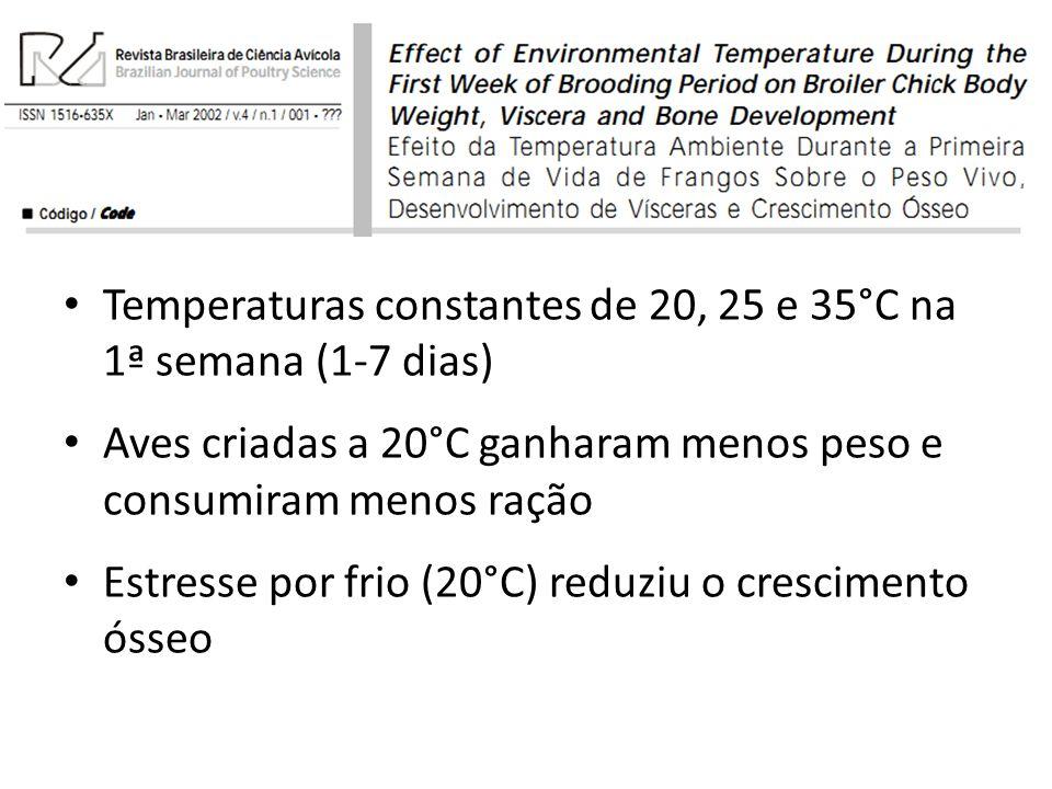 Temperaturas constantes de 20, 25 e 35°C na 1ª semana (1-7 dias) Aves criadas a 20°C ganharam menos peso e consumiram menos ração Estresse por frio (2