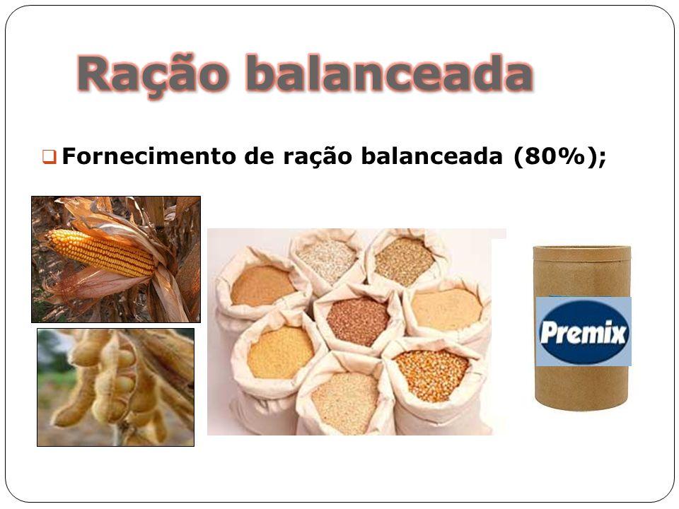 Fornecimento de ração balanceada (80%);