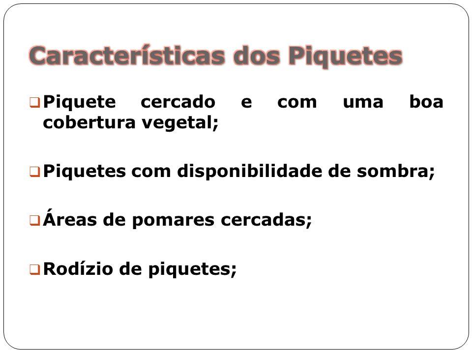 Piquete cercado e com uma boa cobertura vegetal; Piquetes com disponibilidade de sombra; Áreas de pomares cercadas; Rodízio de piquetes;