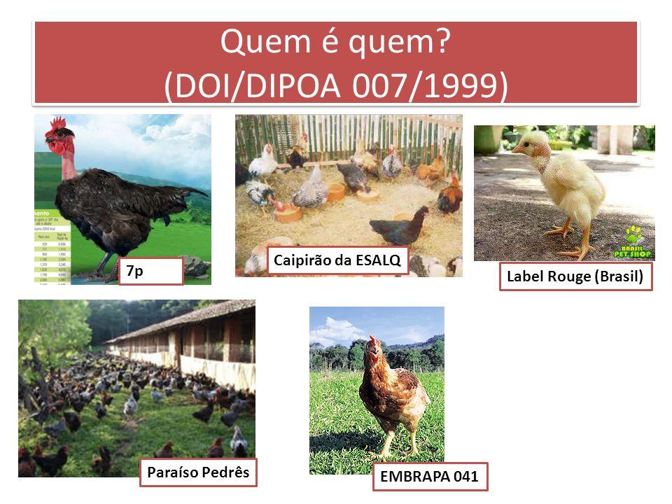 Quem é quem? (DOI/DIPOA 007/1999) Caipirão da ESALQ 7p Label Rouge (Brasil) Paraíso Pedrês EMBRAPA 041