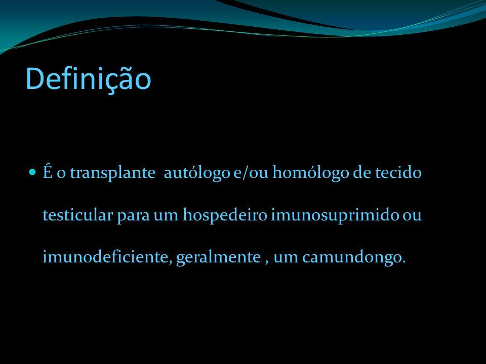 Definição É o transplante autólogo e/ou homólogo de tecido testicular para um hospedeiro imunosuprimido ou imunodeficiente, geralmente, um camundongo.
