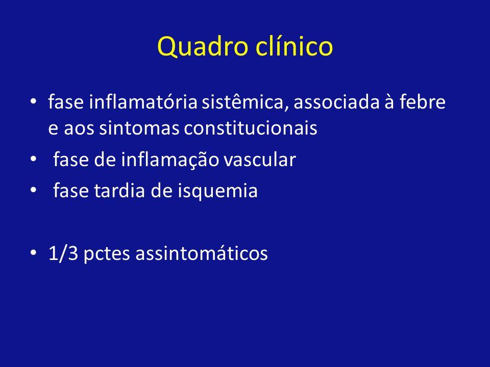 Quadro clínico fase inflamatória sistêmica, associada à febre e aos sintomas constitucionais fase de inflamação vascular fase tardia de isquemia 1/3 p