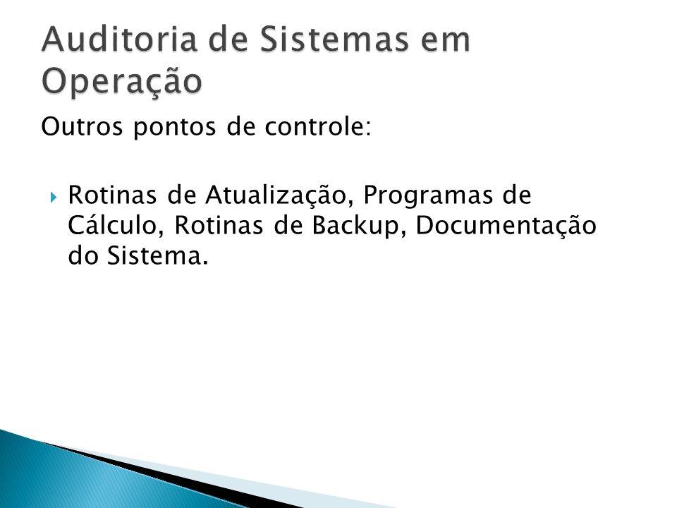 Outros pontos de controle: Rotinas de Atualização, Programas de Cálculo, Rotinas de Backup, Documentação do Sistema.