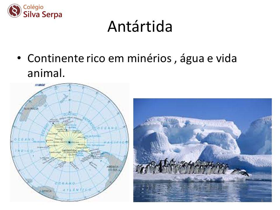 Antártida Continente rico em minérios, água e vida animal. 6