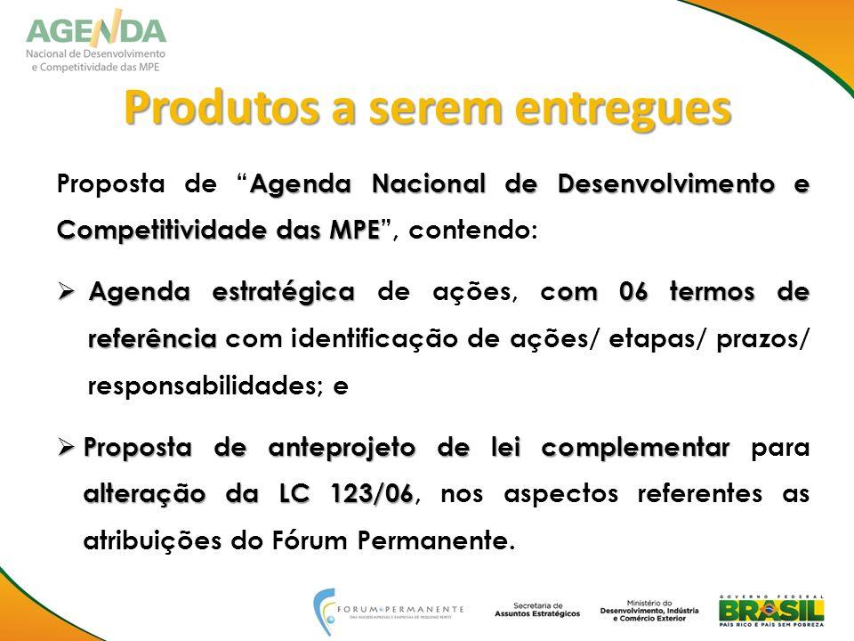 Produtos a serem entregues Agenda Nacional de Desenvolvimento e Competitividade das MPE Proposta de Agenda Nacional de Desenvolvimento e Competitivida