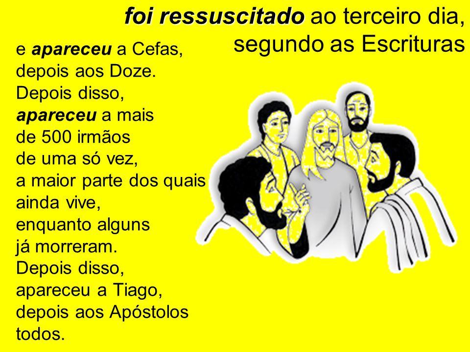 foi ressuscitado foi ressuscitado ao terceiro dia, segundo as Escrituras e apareceu a Cefas, depois aos Doze. Depois disso, apareceu a mais de 500 irm