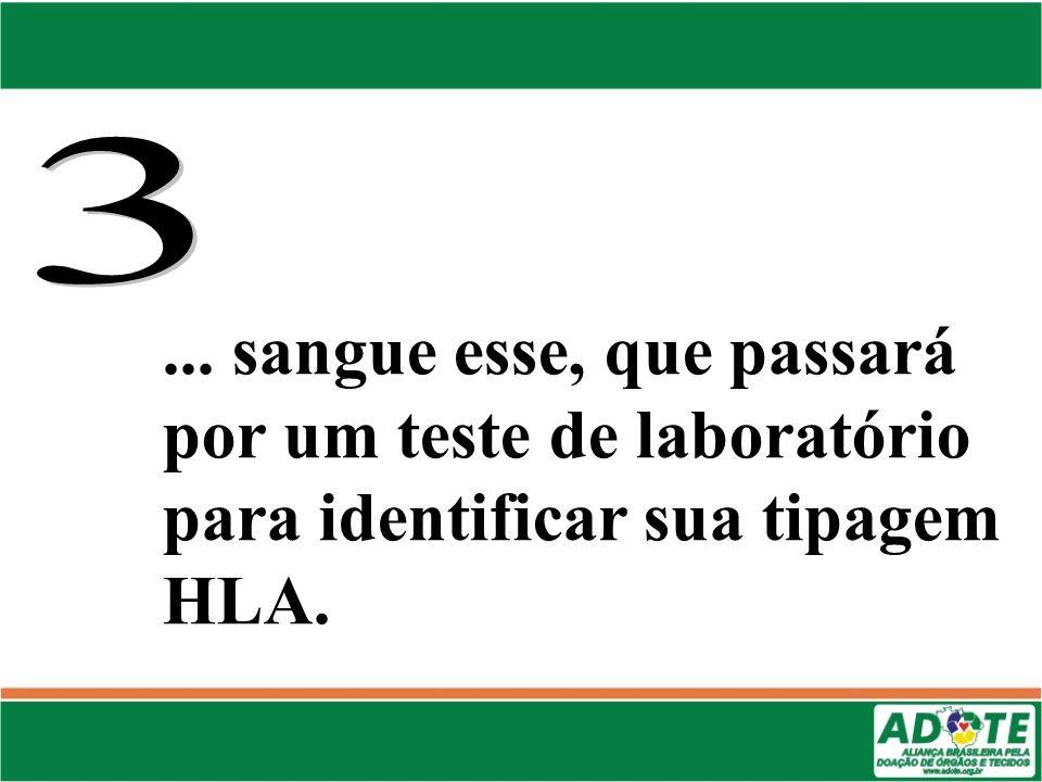... sangue esse, que passará por um teste de laboratório para identificar sua tipagem HLA.