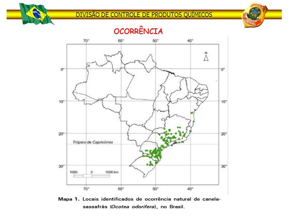 DIVISÃO DE CONTROLE DE PRODUTOS QUÍMICOS Tal fato permite que a região sul do Brasil, em especial os estado do Paraná e de Santa Catarina, sejam considerados excelentes locais para obtenção clandestina de Safrol e consequentemente para produção de diversos tipos de Ecstasy.