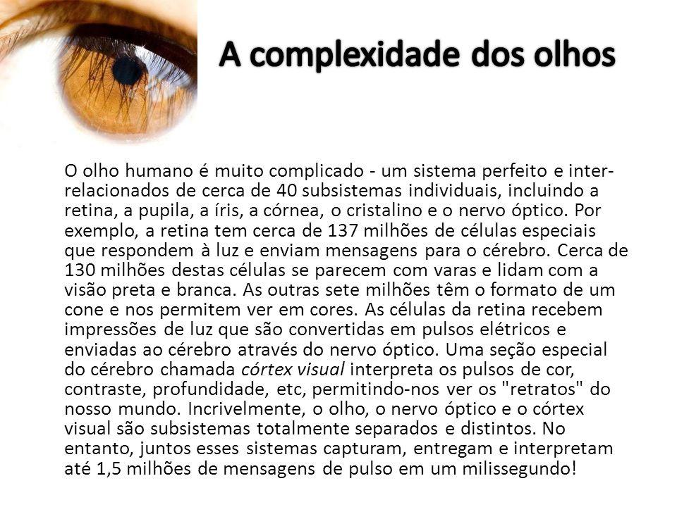 O olho humano é muito complicado - um sistema perfeito e inter- relacionados de cerca de 40 subsistemas individuais, incluindo a retina, a pupila, a í
