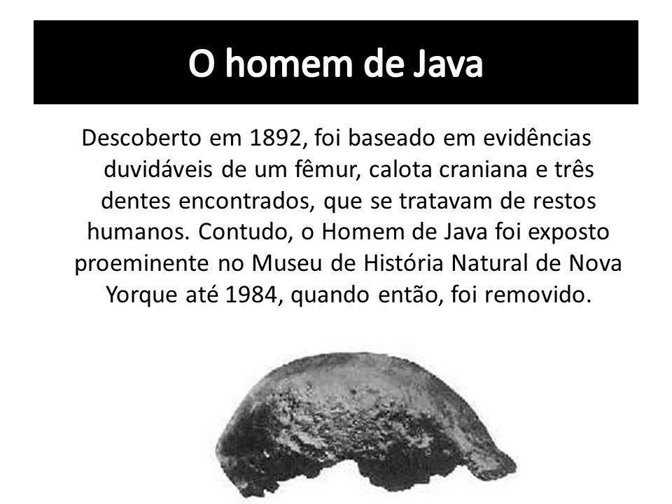 Descoberto em 1892, foi baseado em evidências duvidáveis de um fêmur, calota craniana e três dentes encontrados, que se tratavam de restos humanos. Co