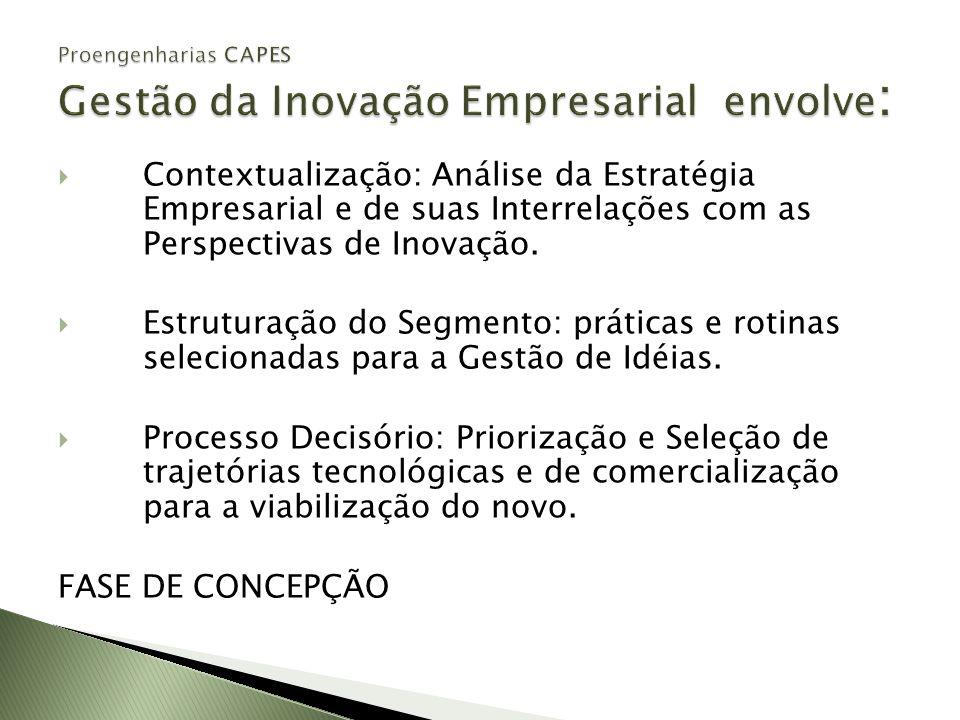 Contextualização: Análise da Estratégia Empresarial e de suas Interrelações com as Perspectivas de Inovação. Estruturação do Segmento: práticas e roti