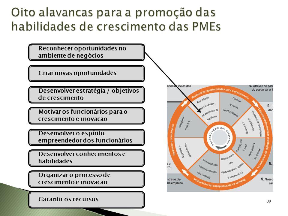Oito alavancas para a promoção das habilidades de crescimento das PMEs 30 Desenvolver estratégia / objetivos de crescimento Motivar os funcionários pa