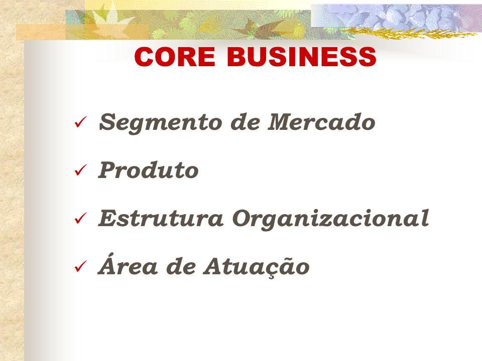CORE BUSINESS Segmento de Mercado Produto Estrutura Organizacional Área de Atuação