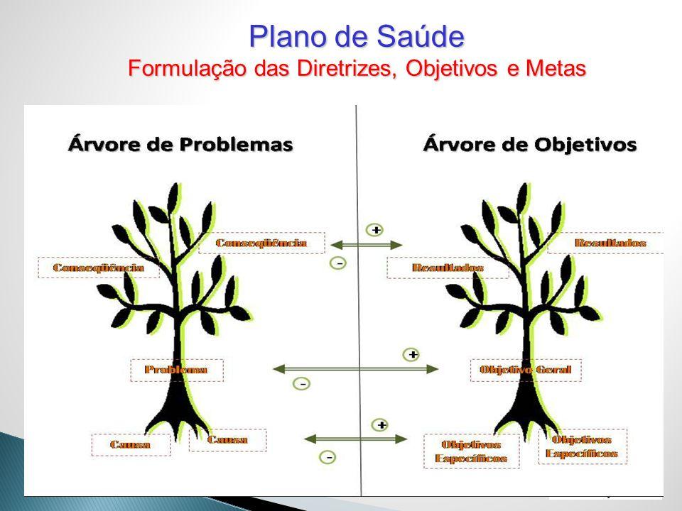 Plano de Saúde Formulação das Diretrizes, Objetivos e Metas