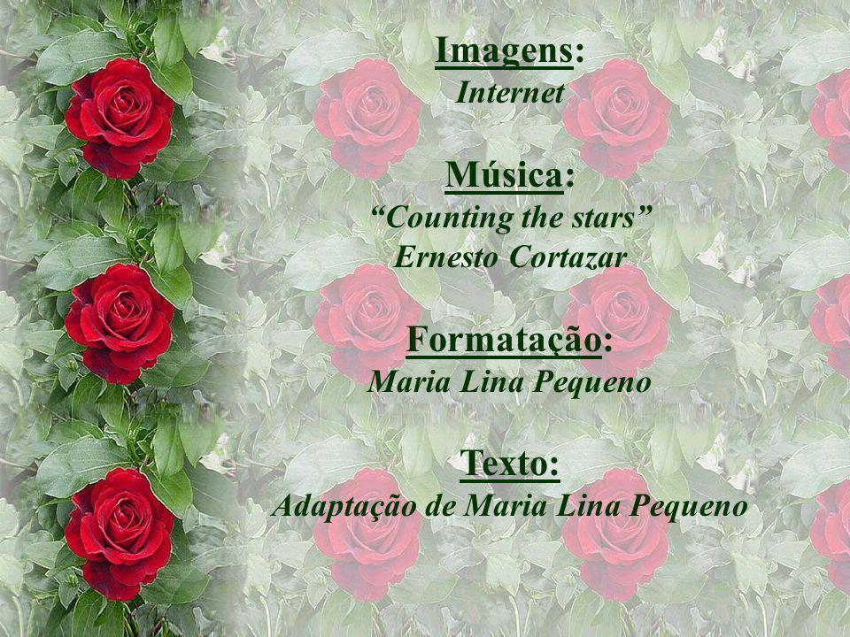 Imagens: Internet Música: Counting the stars Ernesto Cortazar Formatação: Maria Lina Pequeno Texto: Adaptação de Maria Lina Pequeno