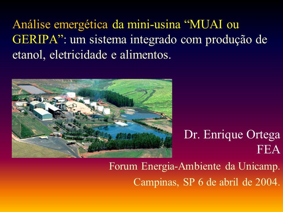 Análise emergética da mini-usina MUAI ou GERIPA: um sistema integrado com produção de etanol, eletricidade e alimentos. Dr. Enrique Ortega FEA Forum E