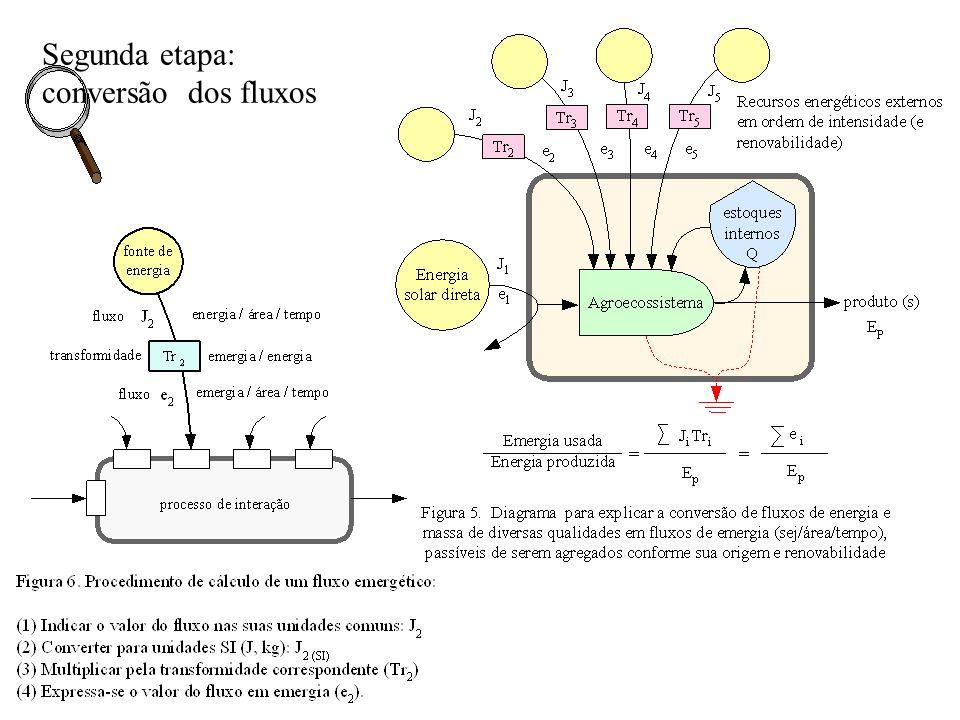 Segunda etapa: conversão dos fluxos