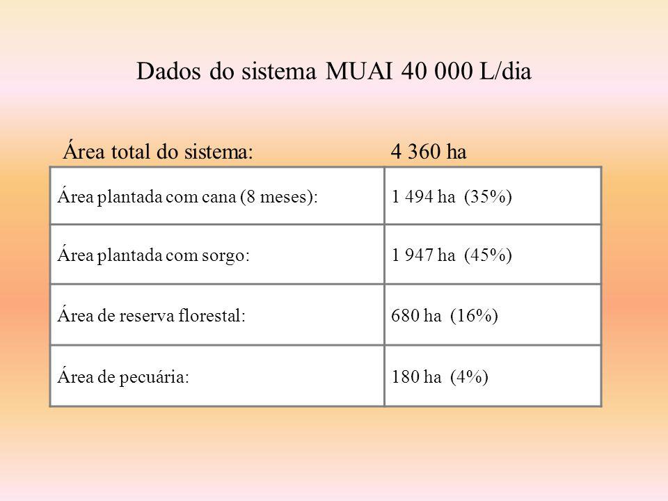 Dados do sistema MUAI 40 000 L/dia Área plantada com cana (8 meses):1 494 ha (35%) Área plantada com sorgo:1 947 ha (45%) Área de reserva florestal:680 ha (16%) Área de pecuária:180 ha (4%) Área total do sistema:4 360 ha
