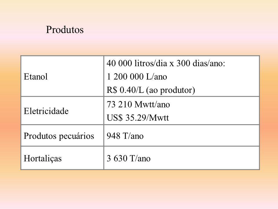 Produtos Etanol 40 000 litros/dia x 300 dias/ano: 1 200 000 L/ano R$ 0.40/L (ao produtor) Eletricidade 73 210 Mwtt/ano US$ 35.29/Mwtt Produtos pecuários948 T/ano Hortaliças3 630 T/ano