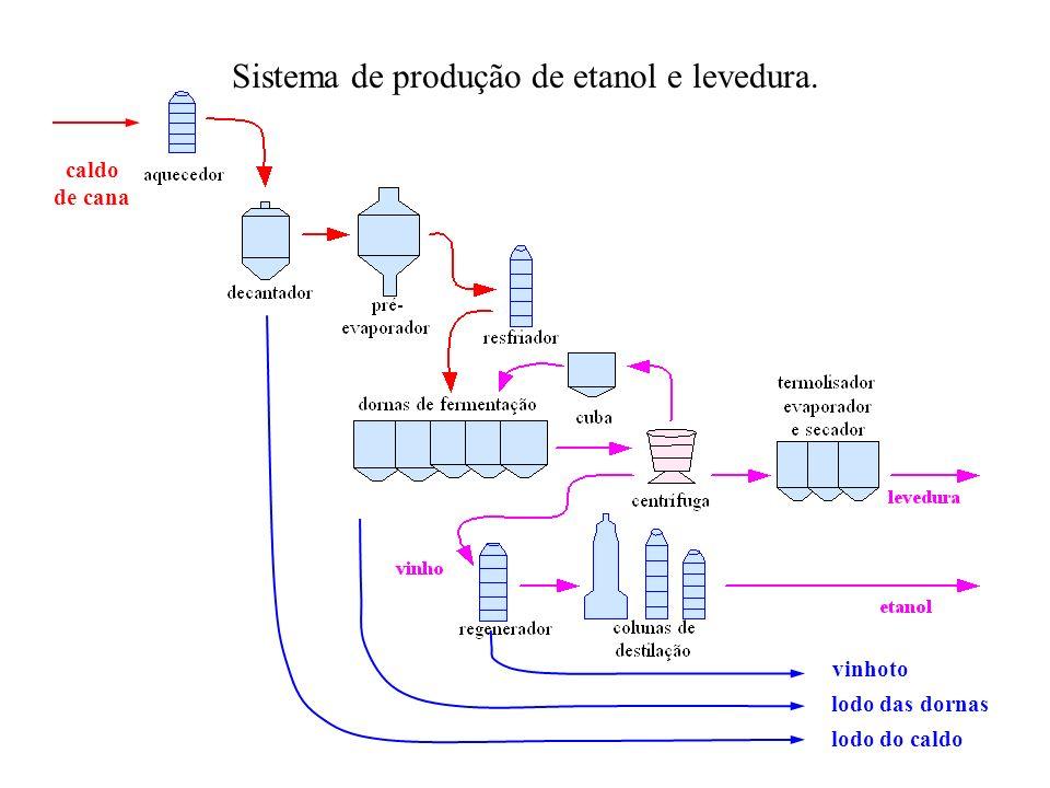 caldo de cana lodo do caldo Sistema de produção de etanol e levedura. vinhoto lodo das dornas