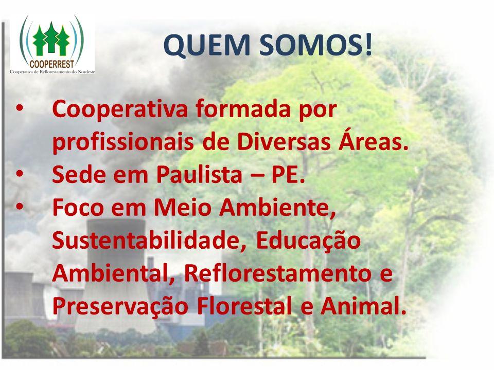 QUEM SOMOS! Cooperativa formada por profissionais de Diversas Áreas. Sede em Paulista – PE. Foco em Meio Ambiente, Sustentabilidade, Educação Ambienta