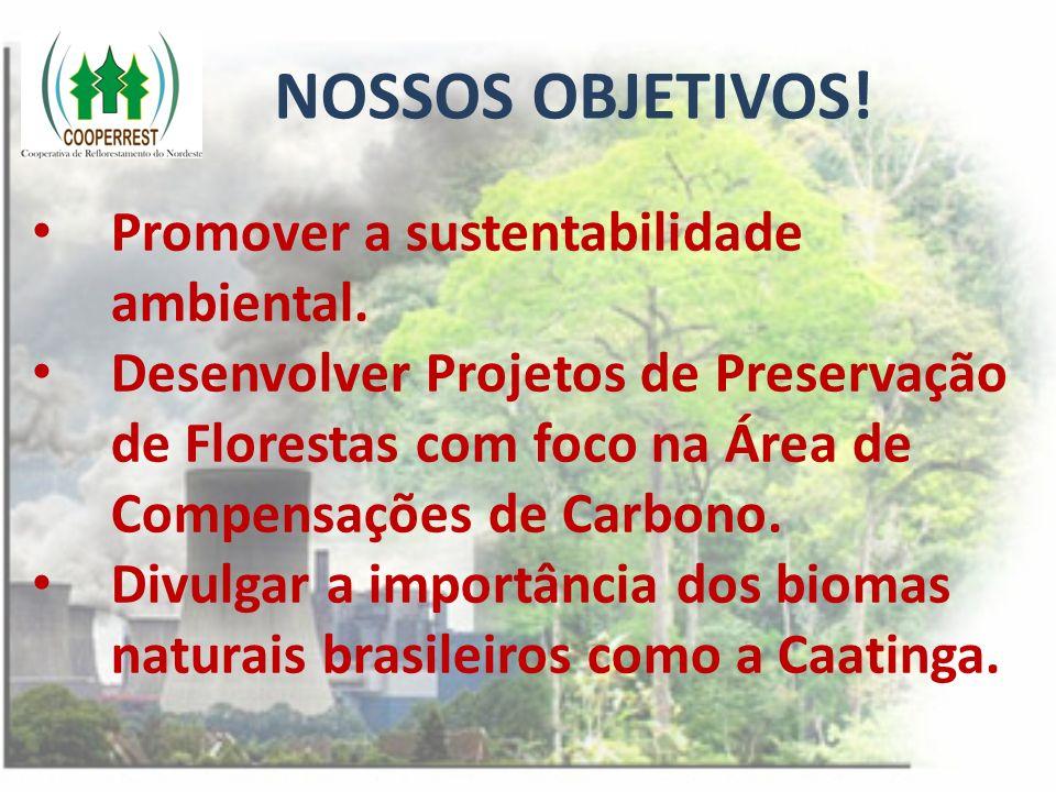 NOSSOS OBJETIVOS! Promover a sustentabilidade ambiental. Desenvolver Projetos de Preservação de Florestas com foco na Área de Compensações de Carbono.