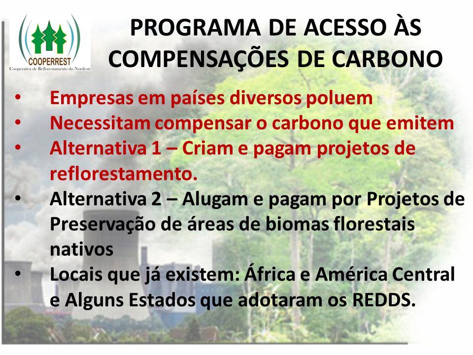 PROGRAMA DE ACESSO ÀS COMPENSAÇÕES DE CARBONO Empresas em países diversos poluem Necessitam compensar o carbono que emitem Alternativa 1 – Criam e pag